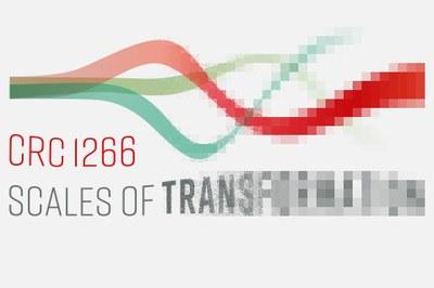 Logo SFB1266